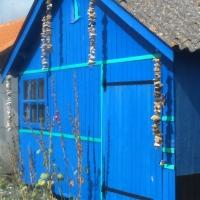 La cabane ostréicole revisitée...