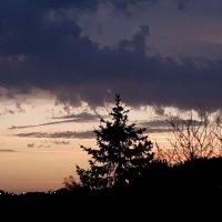 La promesse de l'aube, pluie en chemin !