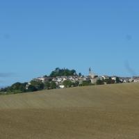 Lautrec (Tarn) capitale de l'ail rose -